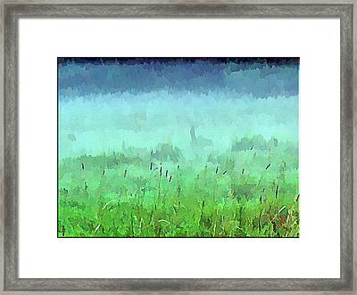 Misty Autumn Meadow Framed Print by Daniel Janda