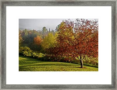 Framed Print featuring the photograph Misty Autumn Morning by Alice Mainville