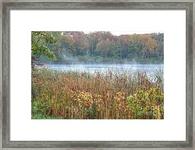 Misty Autumn Morning Framed Print