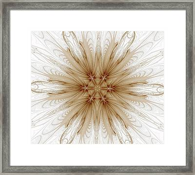 Misty Brown Mandala Framed Print