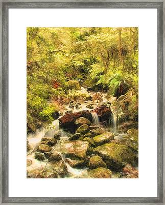 Misty Creek Framed Print by Dale Jackson