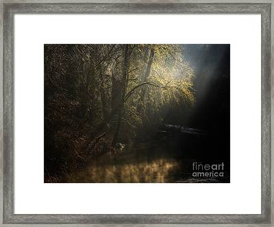 Framed Print featuring the photograph Misty Creek by Inge Riis McDonald