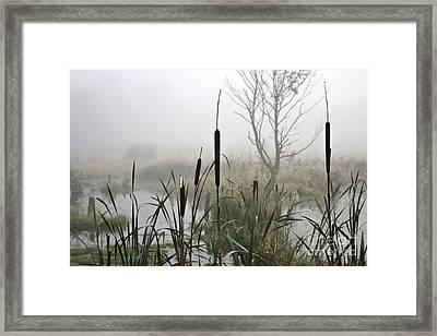 Misty Day Framed Print by Heiko Koehrer-Wagner