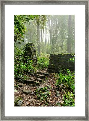 Misty Day In North Yorkshire Framed Print