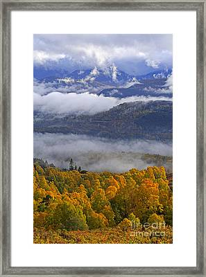 Misty Day In The Cairngorms Framed Print