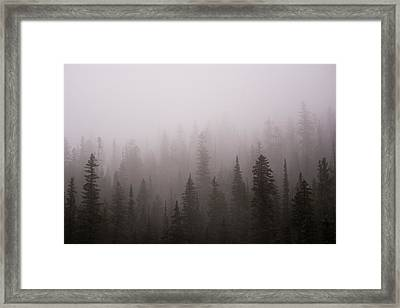 Misty Framed Print