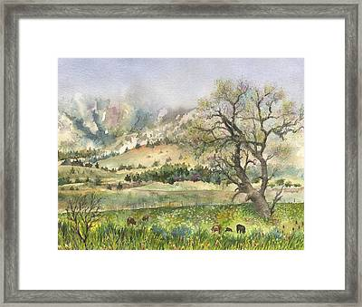 Misty Flatirons Framed Print by Anne Gifford