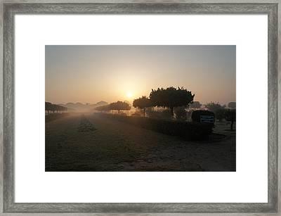 Misty Garden In The Morning Light Framed Print