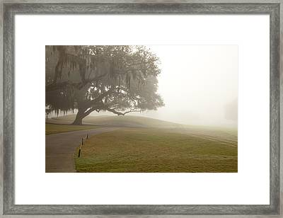 Misty Golf Course I Framed Print by Barbara Northrup