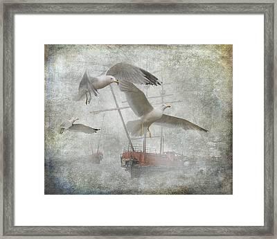 Misty Harbor With Gulls Framed Print