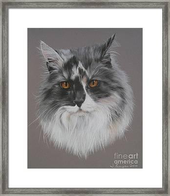 Misty Framed Print by Joanne Simpson