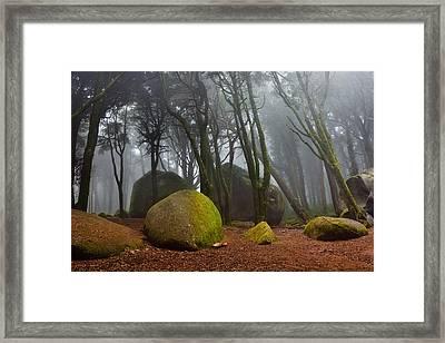 Misty Framed Print by Jorge Maia