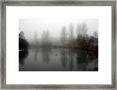 Misty Lake Reflections Framed Print