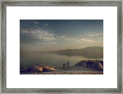 Misty Memories Framed Print by Laurie Search