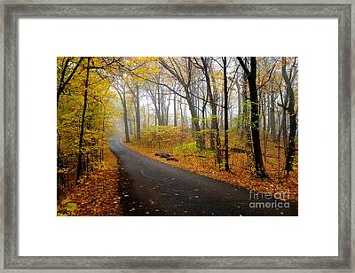 Misty Minnesota Mile Framed Print