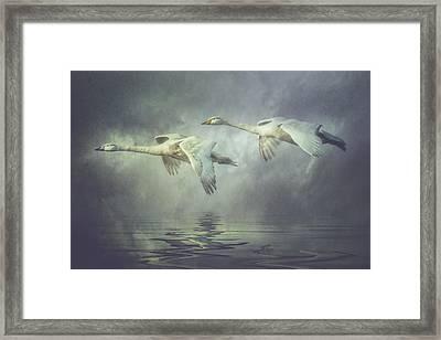 Misty Moon Shadows Framed Print
