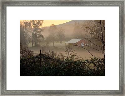 Misty Morn And Horse Framed Print