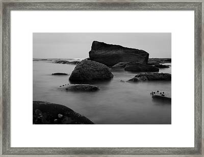 Misty Morning Framed Print by Andrew Pacheco