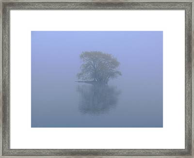 Misty Morning At Jamaica Pond Framed Print