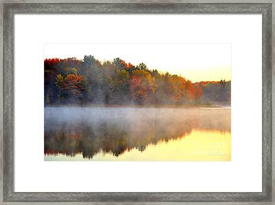 Misty Morning At Stoneledge Lake Framed Print by Terri Gostola