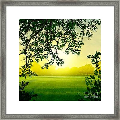 Misty Morning Framed Print by Bedros Awak