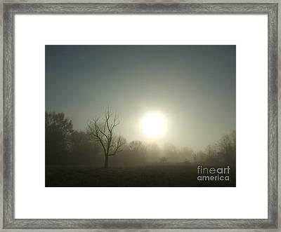 Misty Morning Blue Framed Print