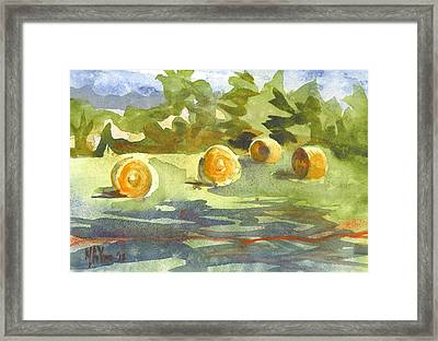 Misty Morning Gold Framed Print by Kip DeVore