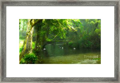 Misty Morning In Clatford Framed Print by Andrew Middleton