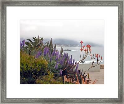 Misty Morning In Laguna Framed Print by Elaine Plesser