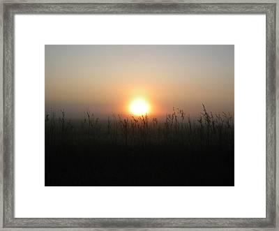 Misty Morning Framed Print by James Petersen