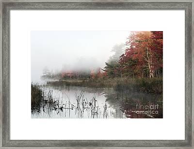 Misty Morning Framed Print by John Greim
