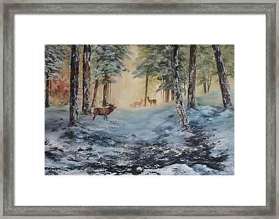 Misty Morning On Cannock Chase Framed Print by Jean Walker