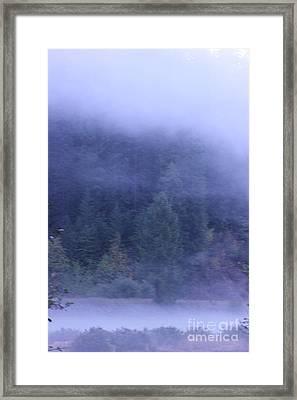 Misty Morning On The St Joe 4 Framed Print
