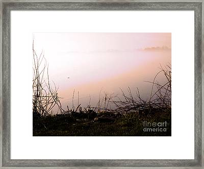 Framed Print featuring the photograph Misty Morning by Robyn King
