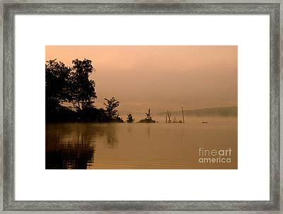 Misty Morning Solitude  Framed Print by Neal Eslinger