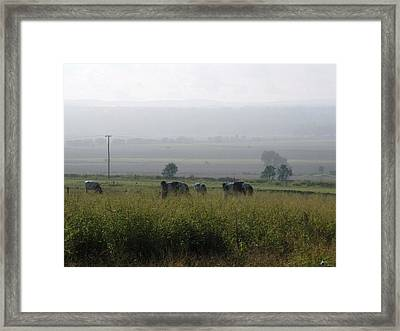 Framed Print featuring the photograph Misty Morning by Therese Alcorn