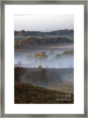 Misty Morning Framed Print by Wendy Wilton