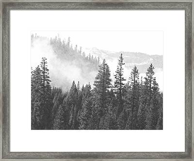 Misty Mountain Framed Print by Frank Wilson