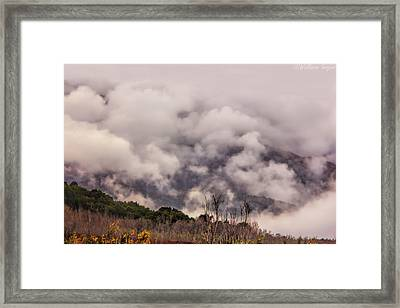 Misty Mountains Framed Print by Wallaroo Images