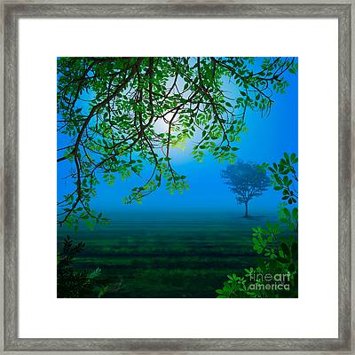 Misty Night Framed Print