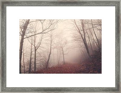 Misty Path Framed Print by Maria Robinson
