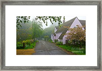 Misty Pink Framed Print by Andrew Middleton