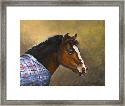 Misty Framed Print by Richard De Wolfe