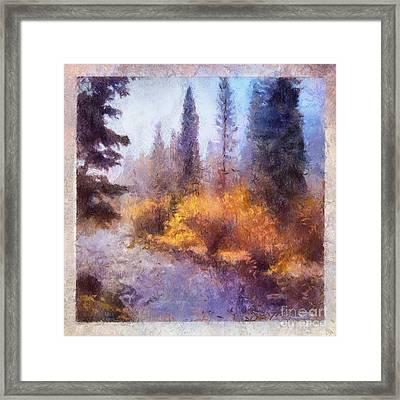 Misty River Afternoon Framed Print