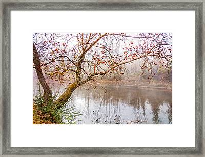 Misty River Framed Print by Debra and Dave Vanderlaan