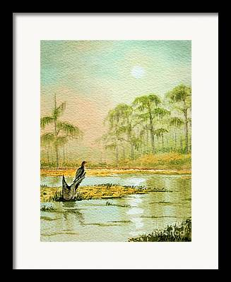 Anhinga Paintings Framed Prints