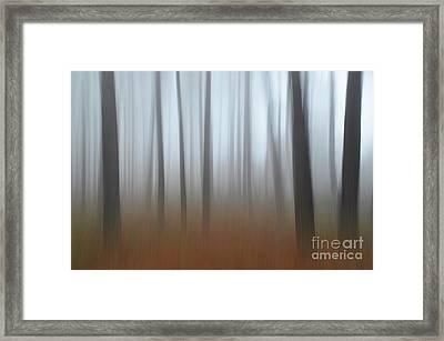 Misty Thoughts Framed Print by Simona Ghidini