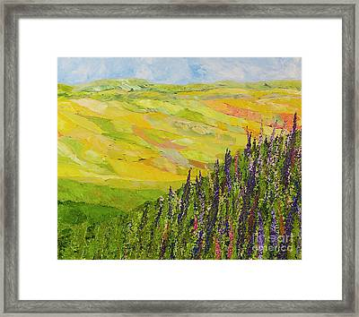 Misty Valley Framed Print by Allan P Friedlander