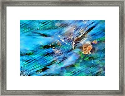 Misty Waters 2 Framed Print by Terril Heilman