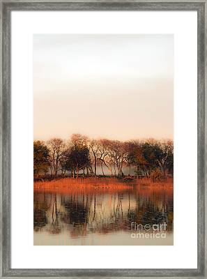 Misty Winter's Morning Framed Print